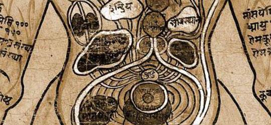 Ayurveda - Medicina Tradizionale Indiana